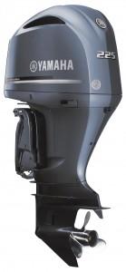 2669-F225FETX_S_EPA_Pob_medium